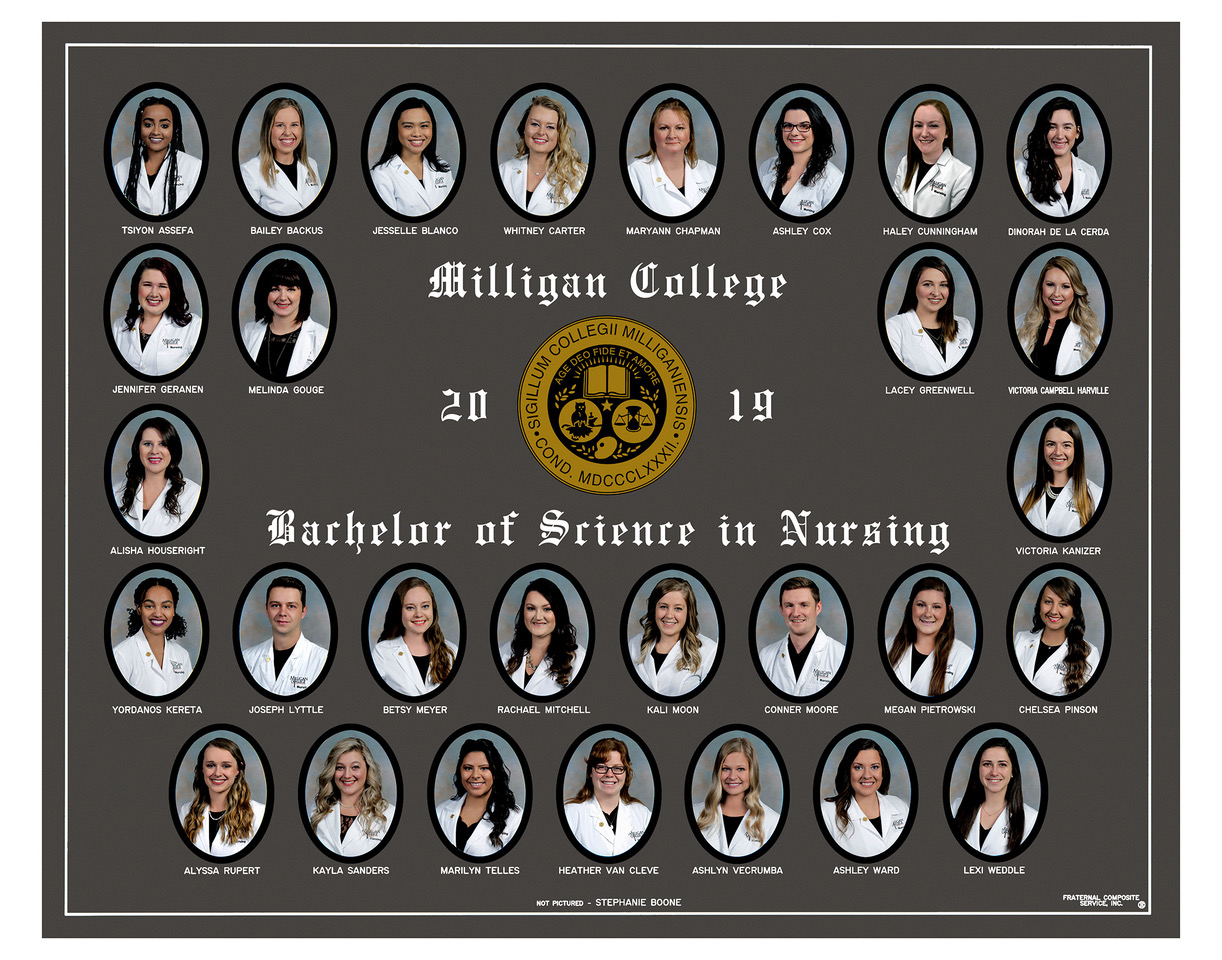 Bachelor of Science in Nursing